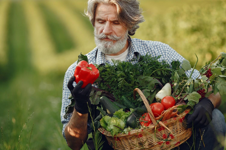 old tomato farmer