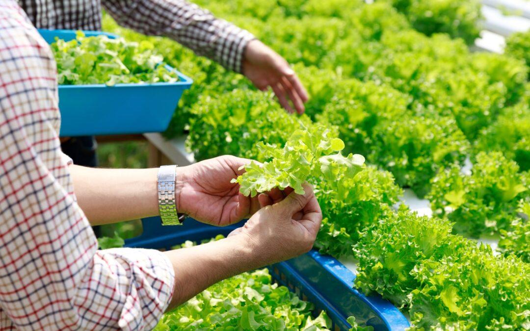 Liabilities of a Farm