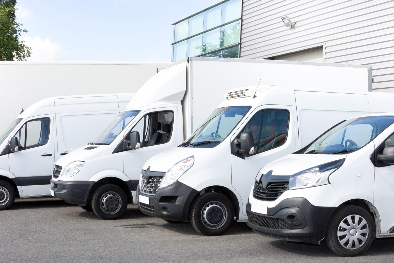 line of vans