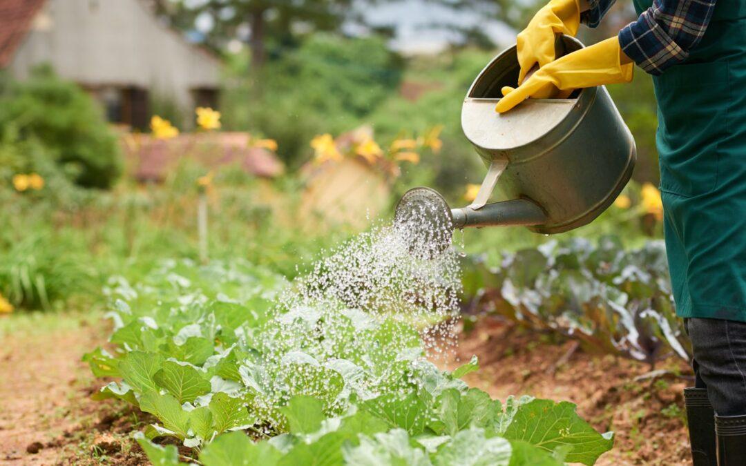 Incidental Farming Coverage