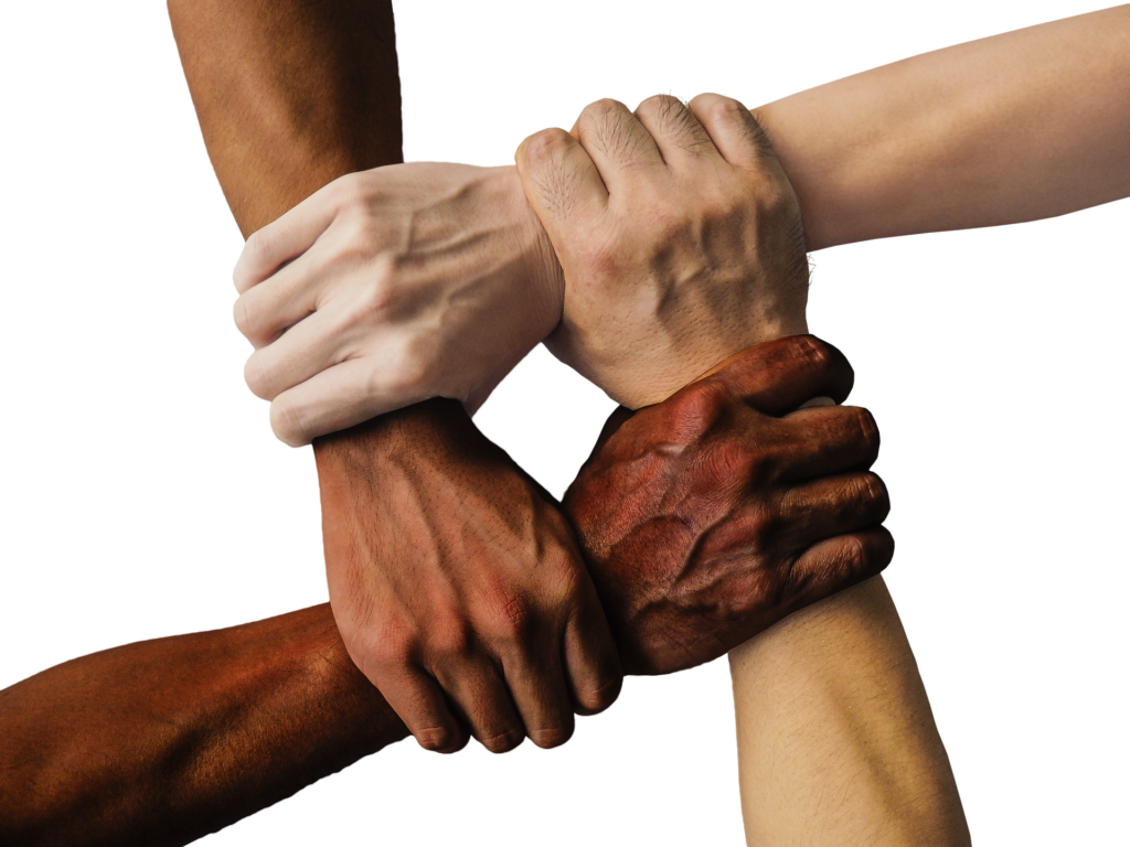 mult-iracial hands holding each other in unity