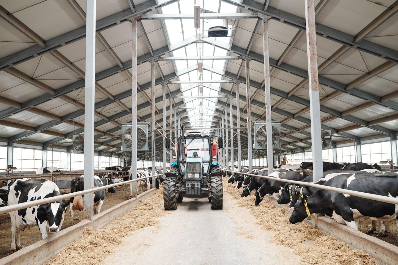 Farm Insurance Policy Mistakes